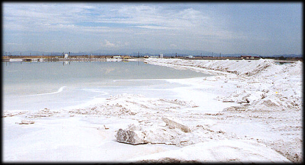 A salt evaporation pond, and piles of salt from Tertiary deposits near Phonix, Arizona.