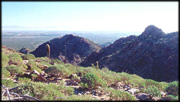 Looking directly east across the Valley of the Sun from the White Tank Mountains.